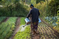 Getting women actively involved in climate change mitigation