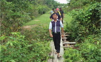 Green Livelihood Access for Central Kalimantan's Inclusive Environmental Response to Climate Change (GLACIER)