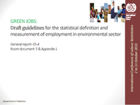 Green jobs: Draft guidelines for the statistical definition and measurement of employment in environmental sector