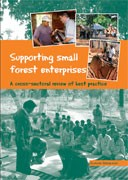 Supporting Small Forest Enterprises: A cross-sectoral review of best practice